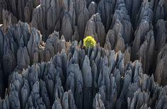 Tsingy lands de bemaraha Madagascar paysages Afrique