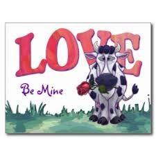 liefde koe - Google zoeken
