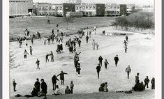 Schiedam. De vijver bij de Vlaardingerdijk omstreeks 1969