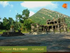 Unique for picturesque surroundings, Forest & Mills serving as refuge for fascinating flora & fauna, Polo forest is a place that connects nature to spirituality. #GujaratDestination