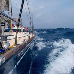 Sailboat Yacht, Beyond The Sea, Tug Boats, Sail Away, Tall Ships, Catamaran, Sailing Ships, Cruise, Surfing