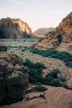 Snow Canyon, Utah - Contax T3