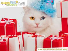 Schöne und lustige Geschenke zum Geburtstag