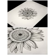#tattoo#dotwork#dot#graphics#flowers#sun#sunflower#brezinski#ink