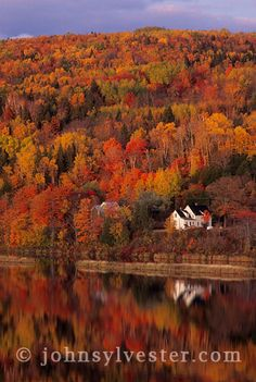 autumn colours;Saint John River;Woodstock;New Brunswick;Canada