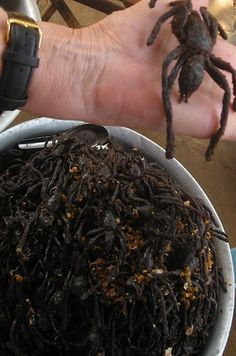 "Snacking on fried spiders. | 11 Travel Adventures That Will Make You Say ""Nope"""