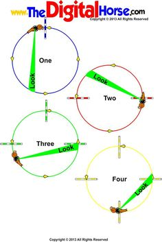 www.TheDigitalHorse.com - Using poles on the 20M Circle for rhythm, consistency and balance.