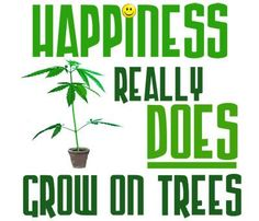 Happiness Really Does Grow On Trees from RedEyesOnline.com