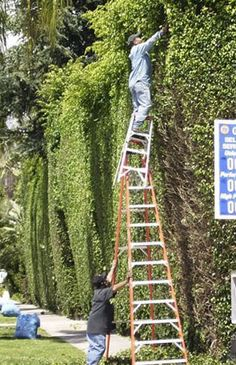 It should go without saying... DO NOT STACK LADDERS!