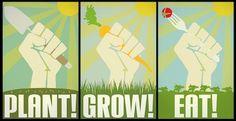 plant, grow, eat