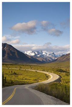 Denali Road - Denali National Park, Alaskahttp://www.trekearth.com/gallery/North_America/United_States/West/Alaska/Denali_National_Park/photo406278.htm