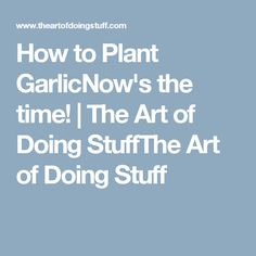 How to Plant GarlicNow's the time! | The Art of Doing StuffThe Art of Doing Stuff