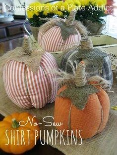 CONFESSIONS OF A PLATE ADDICT: Easy No-Sew Shirt Pumpkins