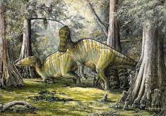 Edmontosaurus, my first dinosaur fossil