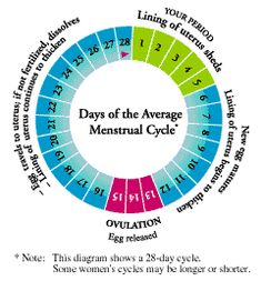 Working Out & your Menstrual Cycle.   Tips on how to maximize your workouts.
