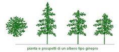alberi 3d dwg - Cerca con Google