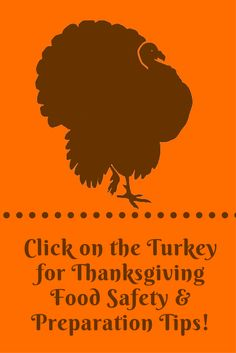Thanksgiving Food Preparation and Food Safety Tips Thanksgiving Activities, Thanksgiving Recipes, Wellness Tips, Health And Wellness, Food Safety Tips, For Your Health, Nutrition Tips, Turkey Recipes, Food Preparation