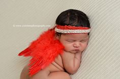Red Feather Angel Wings Newborn Baby Photography Prop | Beautiful Photo Props