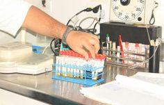 Segundo caso de hantavirus en Los Santos - Mastrip.net
