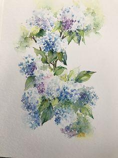 Hydrangeas by Sheila McAdam. One of my favourites.