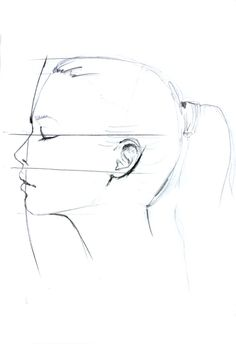 Profile head