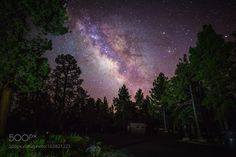 Arizona Campground at Night  The Milky Way over the trees at the Kaibab Lake Campground in Williams Arizona.  Camera: Canon EOS 5D Mark III Shutter Speed: 20sec ISO/Film: 1600  Image credit: http://ift.tt/29SWaHR Visit http://ift.tt/1qPHad3 and read how to see the #MilkyWay  #Galaxy #Stars #Nightscape #Astrophotography