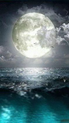 ♥The beautiful moon . inspired by the moon . Beautiful Moon, Beautiful World, Beautiful Places, Moon Pictures, Pretty Pictures, Moon Pics, Amazing Pictures, Water Pictures, Moon Photos
