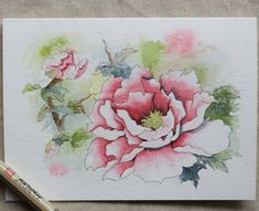 Pink Peony Watercolor Painted Card (Landscape)- PRINT only