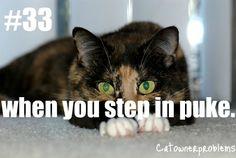 Cat Problem #33: when you step in puke %~(