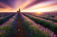 Travel Landscapes During The Golden Hour by Julien Grondin #inspiration #photography
