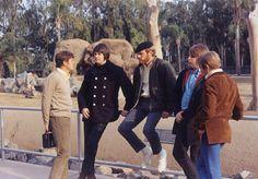 mike-love-media-image22...Beach Boys