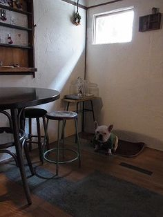 cafe gallery CONVERSION|Japan Traditional Folk Houses |Cafe & Restaurant #tokyo