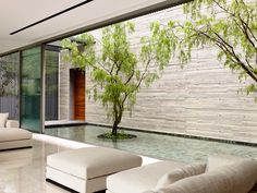 Casas Minimalistas y Modernas: patios