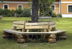 panchina albero - Cerca con Google