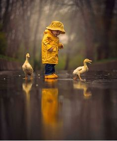Post with 1904 votes and 96265 views. Tagged with cute, nature, amazing, beautiful, rain; Enjoying rainy day together Children Photography, Art Photography, Yellow Photography, Rainy Day Photography, Little Boy Photography, Australian Photography, Umbrella Photography, Photography Training, Photography Settings
