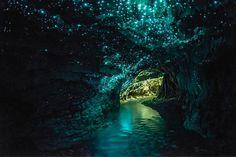 Conheça a caverna lisérgica que é toda iluminada por insetos