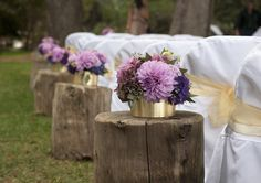 aisle stumps, bringing the outdoors in the church