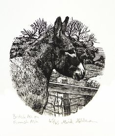 Donkey Original Hand Carved and Printed by ShopPicaDoodlePress