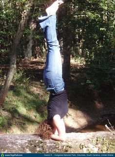 Check out the amazing Headstand by Carsta Ruijsestein; yoga pose performed at Congaree National Park, Columbia, South Carolina, United States on YogaTrail; the World's Yoga Network. Congaree National Park, Yoga Pictures, Floor Workouts, Latest Gadgets, Teacher Favorite Things, Yoga Poses, Pilates, Woods, National Parks