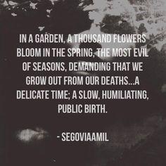 Segovia Amil, poetry