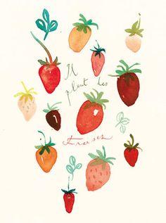 Strawberry watercolor illustration. Il pleut des fraises means : It is raining strawberries.