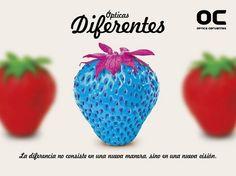 Óptica Cervantes - Campañas