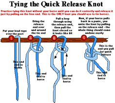Easy way to tie a slip not or known as a quick release knot. Easy way to tie a slip not or known as a quick release knot. - Art Of Equitation Quick Release Knot, Star Stable Online, Arte Equina, Clydesdale, Horse Information, Rope Halter, Horse Care Tips, Horse Facts, Horse Camp
