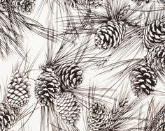 November Pine - Black and White Pine Cones Cotton Print Fabric ...