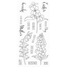 Clearly Besotted FRESH FLOWERS Clear Stamp Set zoom image
