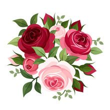 Wall Mural - Red and pink roses. Vector illustration.
