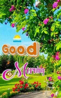 Sweet Good Morning Images, Good Morning Flowers Pictures, Good Morning Beautiful Pictures, Good Morning Picture, Sunday Images, Good Morning Wishes Friends, Good Morning Happy Sunday, Good Morning Greeting Cards, Good Morning Greetings