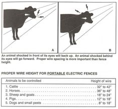 Electric Fence Design How to install an electric fence horse fencing pinterest electric fence how to install workwithnaturefo