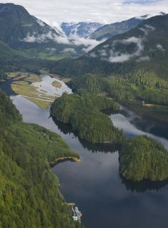 The Most Beautiful Forests Worldwide - Great Bear Rainforest, Canada and USA