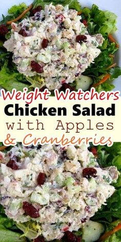 Weight Watchers Chicken Salad - - Searching for a delicious chicken salad recipe that low in points? This Weight Watchers Chicken Salad is 1 point a serving and is great for lunch or dinner! Chicken Salad With Apples, Chicken Salad Recipes, Healthy Salad Recipes, Healthy Chicken, Salad Chicken, Weight Watchers Chicken Salad Recipe, Apple Chicken Salads, Low Calorie Chicken Salad, Canned Chicken